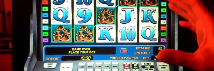 бонусные азартные игры